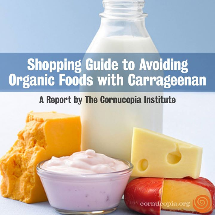 avoid-carrageenan
