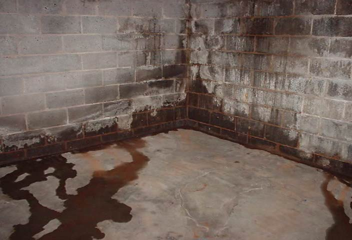 wet-basement