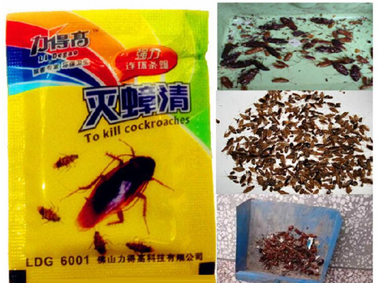 Force-high-bombs-qing-powerful-serial-kill-cockroach-cockroach-killer-best-results-a-whole-nest-nest